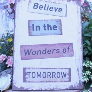 Deko Blechschild Believe In The Wonders Of Tomorow