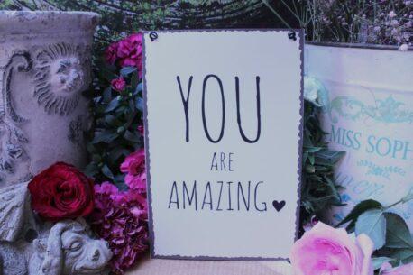 Deko Blechschild Lebenssprüche Aufhänger You Are Amazing