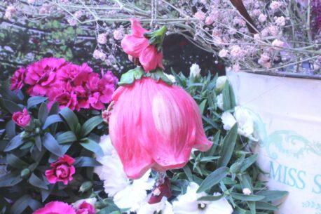 Deko Figur Fee Blumenmädchen Mohnblume zum Hängen