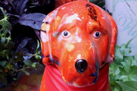 Pomme Pidou Spardose Hund Orange Retriever Bello Blumen