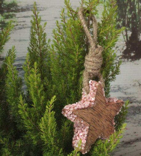 Weihnachtsstern Holzstern Zauberhafte Weihnachten 7cm ∅