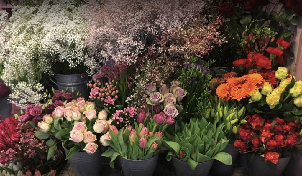 Elfengarten Dormagen Blumengeschäft