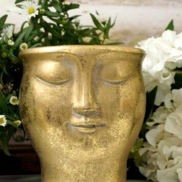 Blumentopf Übertopf Gesicht Lächelnd Goldfarben